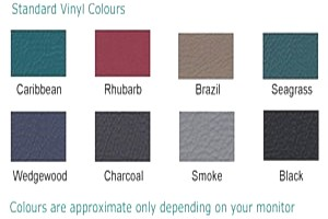 physiotherapy couch vinyl colours